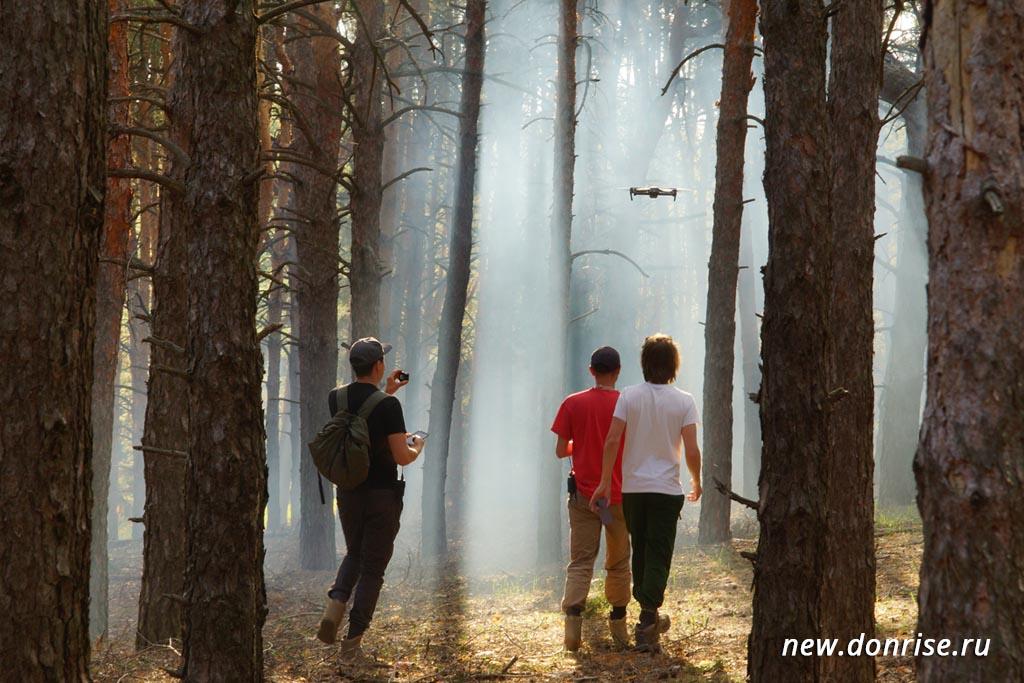 В лесу. Искусственный туман