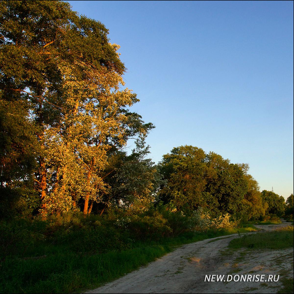 Дорога. Первые лучи солнца